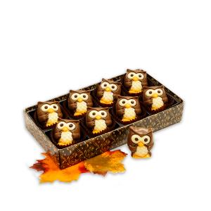 Belgian Chocolate Owls