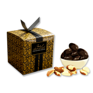 Dark Chocolate Coated Brazil Nuts